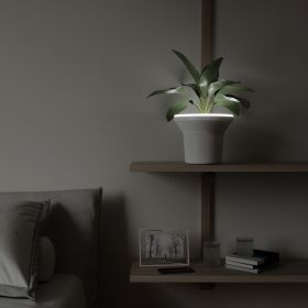 UMBRA ORA PLANTER WHITE
